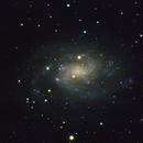 NGC 300 The Southern Pinwheel,                                Ian Parr