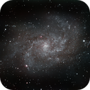 M33 - The Triangulum Galaxy,                                Timothy Martin & Nic Patridge