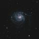 M101 - Pinwheel Galaxy,                                Sabin Roman