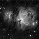 The Orion Nebula,                                Petar_Babic