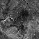 IC 1396,                                Vince