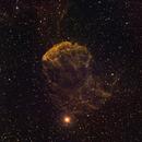 IC 443 Jellyfish Nebula,                                Sharky