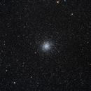 M22 in Sagittarius,                                Marcelo Alves
