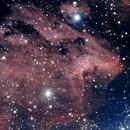 IC 5067 Pelican Nebula,                                scott1244
