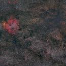 IC 1396 Widefield,                                Florian_Pieper