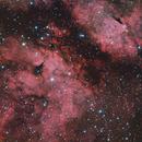 IC 1318 - Ldn 889 - Bernes 21 - DWB 70-1,                                Jerry@Caselle