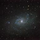 M33, Triangulum Galaxy,                                Sergei Sankov