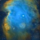 NGC2175 - Monkey Head Nebula,                                Tim Hutchison
