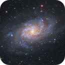 Messier M33,                                Michael