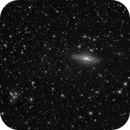 Deer Lick Group + Stephan's quintet,                                Giovanni Paglioli