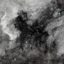 North American and Pelican nebula,                                Jeff Bottman