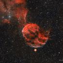 Jellyfish Nebula,                                Michael Lev