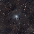 Iris Nebula,                                Marc Mantha