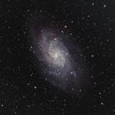 The Triangulum Galaxy - M33,                                Shawn Harvey