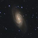 NGC 2903 - A Barred Spiral Galaxy in Leo,                                Michael Deyerler
