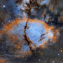 IC 1795 Hubble Palette (work in progress),                                Salvopa