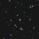 Ammasso aperto del Presepe o dell'alveare - M44,                                Riccardo Sgaramella