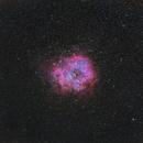 The Rosette Nebula - 300mm,                                  David McGarvey