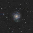M74,                                Brice