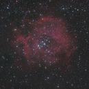 Rosette Nebula (NGC2244 & NGC2252 open clusters),                                Tyco