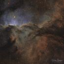 Fighting Dragons of Ara (NGC6188),                                  Ricky Goodyear