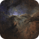 Fighting Dragons of Ara (NGC6188),                                Ricky Goodyear