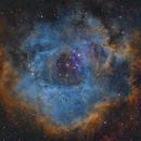 The Rosetta Nebula - NGC 2244 - in narrowband,                    Simon