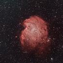NGC 2174 Monkey Head Nebula,                                cajusor