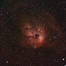 NGC 1893 - Tadpoles,                                Marcelo