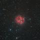 Cocoon Nebula,                                KIJJA JEARWATTANA...