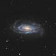 NGC5033 - Spiral Galaxy in CV / 2020,                                Mikko Viljamaa