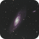 M106 & NGC4217,                                Michael Bate
