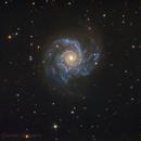 M74,                                Daniele Gasparri