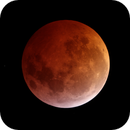 Video Lunar Eclipse,                                José J. Chambó