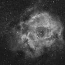 Rosetta nebula  (NGC2244) in HA,                                  Marcus Wögerer