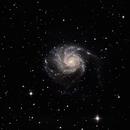 M101 - Pinwheel Galaxy,                                Steve Boone
