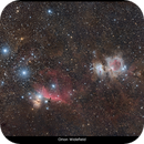 Orion Widefield 4h,                                TheCounter