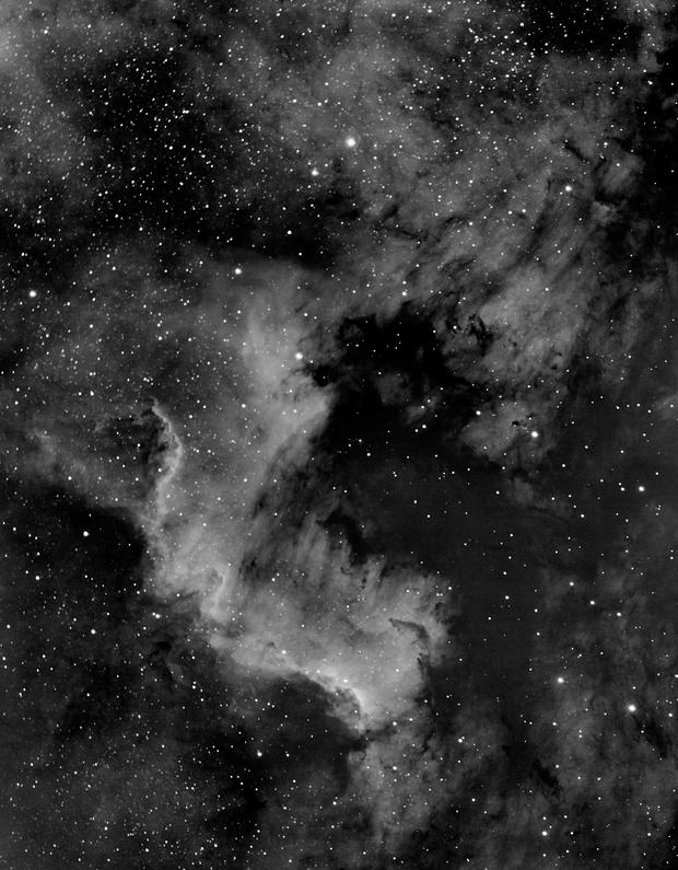 NGC 7000 - North America Nebula in HA,                                nerdybeardo