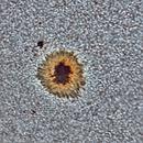 Sun AR12526 detail,                                Stephan Reinhold