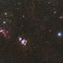 Orion area 'wide field',                                PiPais