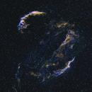 Cygnus Loop (HOS Hubble Palette),                                Johannes Schiehsl