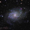 M33,                                Pietro Canepa