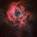 The Galactic Rose- Two Panel Mosaic,                                Matt Harbison