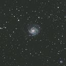 M101 - Pinwheel galaxy,                                Michal Vokolek