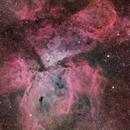 NGC 3372, Eta Carinae,                                Annette & Holger