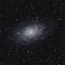 M33,                                Dan Kordella