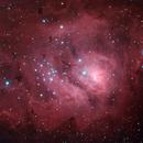 Lagoon Nebula,                                Malcolm Ellis