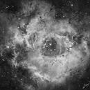 NGC 2244 AND NGC 2237 ROSETTE NEBULA IN HA,                                Roger R. Sanchez Giammattei