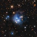 NGC 7129,                                Matthew Proulx