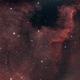 NGC7000 North America Nebula,                                Andrea Collevecchio